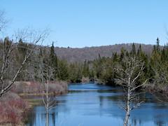 hudson-river-413 (jmunt) Tags: hudsonriver adirondack landscape
