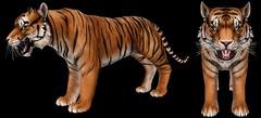 JIAN Tiger WIP (Belle) ([JIAN]) Tags: secondlife mesh animals tiger jian