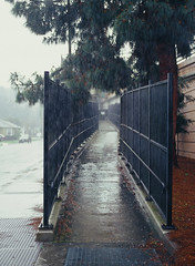 Sunnyvale, California (bior) Tags: sunnyvale california rain downpour sidewalk walkway pentax645nii pentax645 6x45cm 645 mediumformat 120 ektachrome e100vs kodakektachrome slidefilm expiredfilm