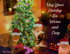 Have A Warm Holiday (brillianthues) Tags: holiday christmas tree cats fireplace colorful collage photography photmanuplation photoshop