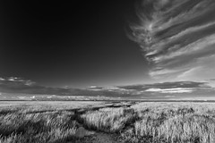 Evening sky on Morston Marshes. (andybam1955) Tags: rural quay landscape monochrome morston clouds coastal morstonquay sky northnorfolk boats autumnlight norfolk sea