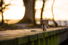 3 (sebastianba95) Tags: canon 5dm3 5d 5dmarkiii tamron2470 tamron2470g2 denmark danmark dk japan japanese danboard danbo nature bokeh figure cute colors amazon adventure