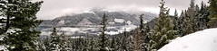 The view from a forestry road (eacmich) Tags: pano panoramic beautiful serene quiet cold winter snow clouds crisp mobile samsung android note8 forest mountains snowcapped valley forestry road bostonbar britishcolumbia canada peaceful nature trees green white