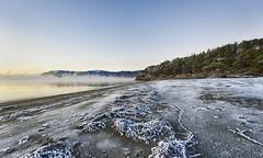 Cold Beach (Frags of Life) Tags: frozenbeach stjørdal stjordal sunset ice myst water nopeople beach coldbeach calm trees algae darksand winter