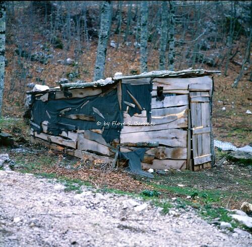 Nusco (AV), 1980, Montagnone di Nusco: abitazioni temportanee durante i lavori forestali.