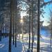 Levé de soleil au bord du fleuve Kemijoki à Savukoski en Laponie