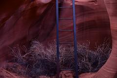 blue (remiklitsch) Tags: color texture arizona nikon remiklitsch november 2018 blue red stone metal ladder canyon slotcanyon antelopecanyon sandstone landscape