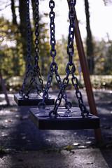 Ferguslie Gardens Autumn (53) (dddoc1965) Tags: dddocdavidcameronpaisleyphotographeroctober25th2018fergusliegardensparkpondswansripplesreflectionsbaloonwaterdewlittertrachplastictreeswoodsidecemeteryautumnhuescolours swingpark playground swings childrensplayarea