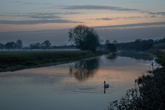 Dusk on the River Nene - Ferry Meadows Country Park, Peterborough, UK-2 (Nature21290) Tags: december2018 ferrymeadows peterborough river rivernene uk