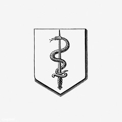 Snake crest (Free Public Domain Illustrations by rawpixel) Tags: monograph animal antique armor badge baroque blackandwhite book chivalry classic coatofarms crest decor decoration design drawing emblem engraving etching europe european family heraldic heraldry honor house illustration insignia knight logo loyalty mascot medieval military name nobility noble old ornament ornamental retro royalty shield snake sword symbol tattoo truìbnercie victorian vintage weapon bw trübnercie