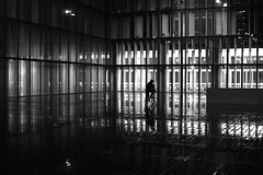 Between the bright walls (pascalcolin1) Tags: paris13 homme man vélo bike nuit night bnf lumières lights reflets reflection photoderue streetview urbanarte noiretblanc blackandwhite photopascalcolin pluie rain