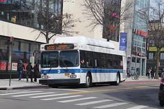 IMG_4839 (GojiMet86) Tags: mta nyc new york city bus buses 2012 c40lf cng 505 b100 kings highway east 16th street
