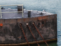 Waiting (Zoom58.9) Tags: river boat rust birds seagulls water chain europe germany rhine fluss rost möwen wasser ketten europa deutschland rhein sony nature natur