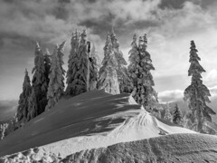 what a great day (genelabo) Tags: greatshotgreat genelabo trees bäume winter snow schnee laber oberammergau bavaria germany deutschland bayern monochrome white weiss forest tree landscape sky sun sonne wetterstein gebirge alps black schwar sw bw
