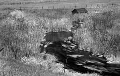 Creekside Shed (arbyreed) Tags: arbyreed marsh creek cattails swamp march shed oldwoodenshed fence infrared 665nanometerinfrared blackandwhtieinfrared bw monochrome stream alge infraredconvertedcanon20d