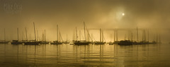 Coronado's Gold (mikeSF_) Tags: coronado sandiego california mikeoria wwwmikeoriacom sailboat sailboats ship bridge tidelands beach park bay city seascape mooring anchor sunrise sunset landscape pano panorama k3ii fa77 77mm limited
