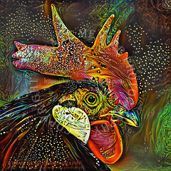 Rooster Art by Kaye Menner (Kaye Menner) Tags: roosterart rooster psychedelicrooster colorful colorfulrooster portrait roosterportrait cockerel cock chanticleer malechicken chicken bird blackrooster digitalart gallusgallus comb roostercomb kayemennerphotography kayemenner eye roostereye feathers roosterfeathers blackfeathers kayemenneranimal kayemennerbird texturedbackground square squareimage multicolored multicolors warmcolors abstract roosterabstract fantasy birdart birdportrait