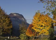 Autumn in the mountain (miroslav0108) Tags: sunshine landscape autumncolors