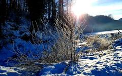 Carpineti (Explore 19 dicembre 2018) (Paolo Bonassin) Tags: carpineti neve controluce annacataldi