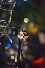 Christmas (Emese's Dolls) Tags: dollchateau vanessa christmas petdoll bjd