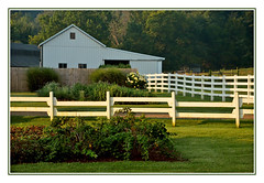 White Barn and Fences in Indiana Amish Country (sjb4photos) Tags: indiana middleburyindiana indianaamishcountry barn fence fencefriday hff