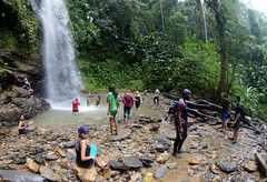 HIKE TO DOUBLE RIVER WATERFALL AND BRASSO SECO FOOD FEST (anax44) Tags: brassoseco trinidadandtobago hike hiking hikingintrinidad hikinginthecaribbean caribbeanfood thingstodointrinidad cocoaintrinidad cocoa cacao cocoaestate waterfall forest jungle