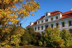Chateau Rychnov nad Kněžnou (ZdenHer) Tags: chateaurychnovnadkněžnou chateau autumn tree architecture sky czechrepublic canonpowershotg7xmarkii