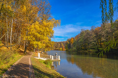October in Tsaritsyno Park / Октябрь в Царицыно (Vladimir Zhdanov) Tags: autumn nature october landscape russia moscow tsaritsyno park forest foliage sky cloud water pond people road grass