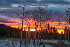 Nature's Paintbrush (RkyMtnGrl) Tags: landscape nature scenery aspens sunrise morning clouds autumn fall snow valley colorado 2018