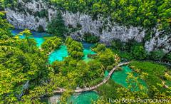 Paradise (Ivan Berta) Tags: croatia europe plitvička jezera plitvice lake water clean clear summer holiday national park tree green nature scenery landscape