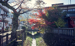 Japanese inner city river bed (KaeriRin) Tags: city town japan gifu canal tourism autumn leaves red green blue water river sony alpha sony7m2 28mm20 anime