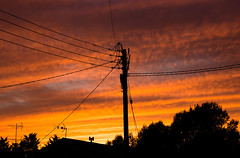 Wires (music_man800) Tags: wires street light silhouette overhead houses house building suburban town outdoors outside pole telegraph lighting spectacular pretty beautiful orange yellow streaky pattern sky sunset sun set evening late afternoon twilight dusk september autumn colours fall 2018 2k18 nature trees tree up uk united kingdom rayleigh essex canon 700d adobe lightroom creative cloud edit photography arty artistic