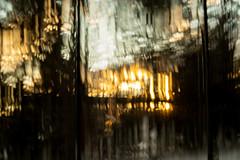 363/365@50 (Ruff Edge Design) Tags: icm intentionalcameramovement multipleexposure trees window sunlight lensbaby velvet56 abstract