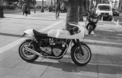 9345.Triumph (Greg.photographie) Tags: canon eos eos1n voigtlander ultron 40mm f2 film analog foma fomapan 100 r09 standdev noiretblanc bw blackandwhite triumph moto motorcycle