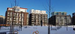 buildings in Jätkäsaari (petra.wessman) Tags: apartment buildings winter snow sunny blue sky trees asuintalo kerrostalo talvi lunta aurinkoista sininen taivas puita bostadshus våningshus vinter snö soligt blå himmel träd jätkasaari busholmen