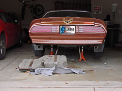 Changing the Fuel Sending Unit on the 1978 Firebird ... (Davey Z(3)) Tags: changing fuel sending unit 1978 firebird pontiac formula chesterfield brown hood scoops camel tan muscle car original daily driver davey z 1 2 3 tank change sender gasoline straps garage photo image