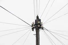 Early 1960's Telegraph Pole With Aluminium Finial (standhisround) Tags: telegraphtuesday pole wires aylesbury buckinghamshire uk england htt 1960s finial