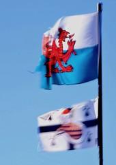 AY 024 (cadayf) Tags: 22 bretagne britanny drapeau dragon tregor vent wind