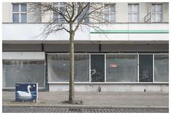 Ostender Straße (epha) Tags: berlin mitte wedding baum verteilerkasten schwan laden leerstand zuvermieten