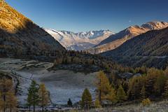 Ultimi colori autunnali (cesco.pb) Tags: simplonpass passodelsempione switzerland svizzera alps alpi vallese canon canoneos60d tamronsp1750mmf28xrdiiivcld alba dawn sunrise montagna mountains
