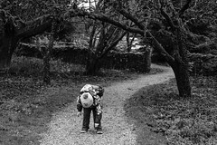 Hamish checking the gravel's depth (timnutt) Tags: sizergh sizerghcastle cumbria 35mm children garden xt2 bw acros monochrome lancashire mono fuji fujichrome family blackandwhite 35f2wr fujifilm