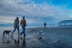 Walking on the beach,  Cannon Beach, Oregon (YL168) Tags: walkingonthebeach cannonbeach oregon sonya