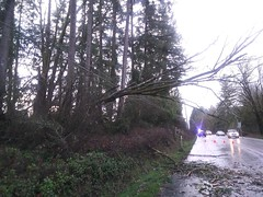 Damage at Old McKenna Road Southeast in Yelm (Puget Sound Energy) Tags: outages poweroutage powerlines powerpole pugetsoundenergy pugetpower pse windstorm olympia thurstoncounty yelm