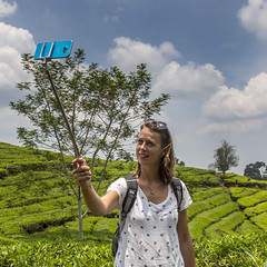 Visit to a tea plantation (Hans van der Boom) Tags: holiday vacation indonesia indonesië asia java westjava tea plantation people shooter selfie telephone id