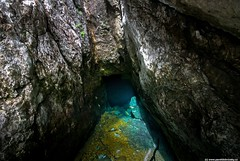 THE SOURCE OF SOČA RIVER (paveldobrovsky) Tags: 2018 alps beautiful beauty blue canyon details emerald environment europe flowing gorge hiking izvir landscape mountain national natural nature outdoor park river rock scene scenic slovenia slovinsko soca soce source stone stream tourism tranquil travel trek trenta triglav turquoise valley water