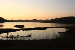 Kukkarahalli Lake (NovemberAlex) Tags: light mysore colour india nature sunset karnataka water