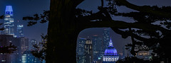 trees that grew around the 1857 watering hole (pbo31) Tags: bayarea california nikon d810 night dark black color january 2019 boury pbo31 sanfrancisco city urban alamosquare park skyline over trees salesforce cityhall dome panorama large stitched panoramic silhouette depthoffield 181fremont