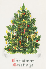 Decorated Christmas tree (Free Public Domain Illustrations by rawpixel) Tags: pdproject20 pdproject20batch44 pdproject22 por poy pdproject20batch44x antique art artwork bauble candle card christmas christmascard christmasgreetings decor decoration design drawing festive flame green greeting greetings happy historical history holiday illuminated illustration leaf leaves lights living magic magical merry merrychristmas name ornament painting postcard print publicdomain retro season seasonal shine shiny sparkle traditional tree trumpet vintage vivid winter xmas