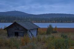Lapland_Day2_Muonio_20180911_IMGS4798_s (Andrew-Holloway) Tags: lapland muonio autumn torassieppi