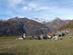 Daloo in autumn (lsdiego85) Tags: daloo alpi alps chiavenna valchiavenna sondrio village villaggio landscape panorama montagne mountains sheep pecore panasonic lumix dcfz82 lombardia lombardy italia italy